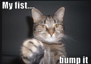 My fist bump it