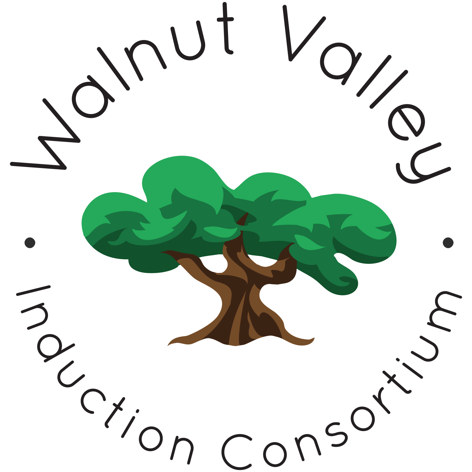 WV Induction Logo