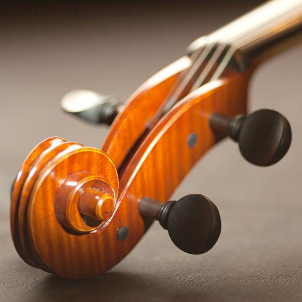A close-up of the end of the top part of a violin