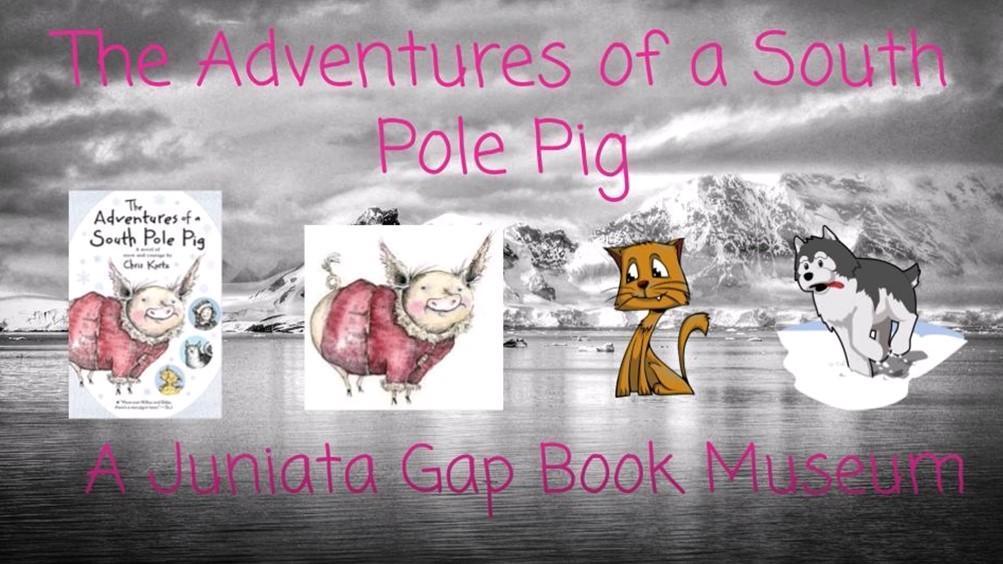 A South Pole Pig