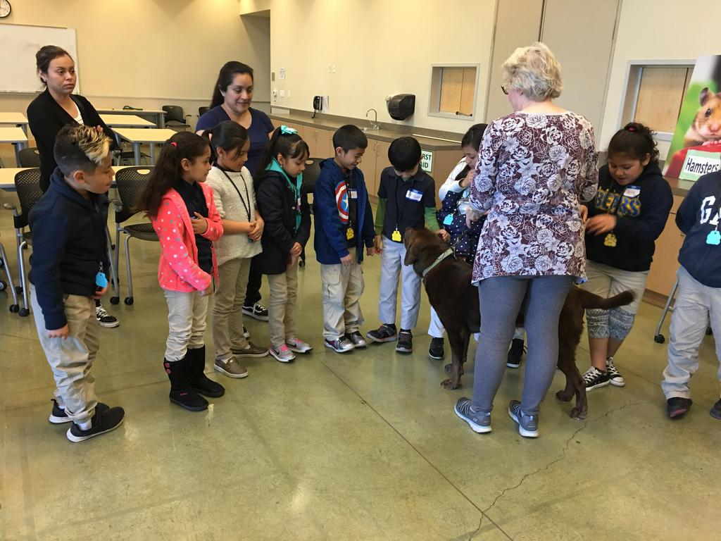 volunteer leads dog around circle of children to teach them how to pet it properly