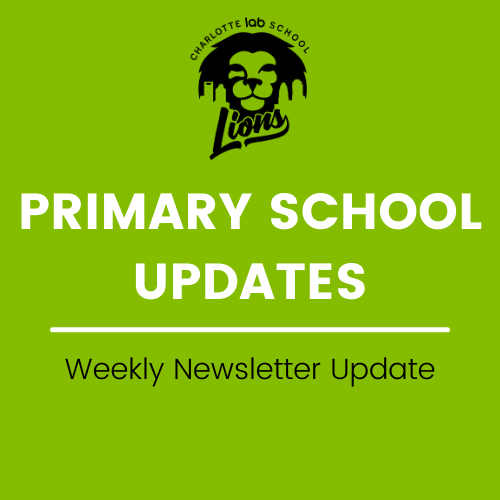 Primary School Updates - Week of 4/19 Featured Photo