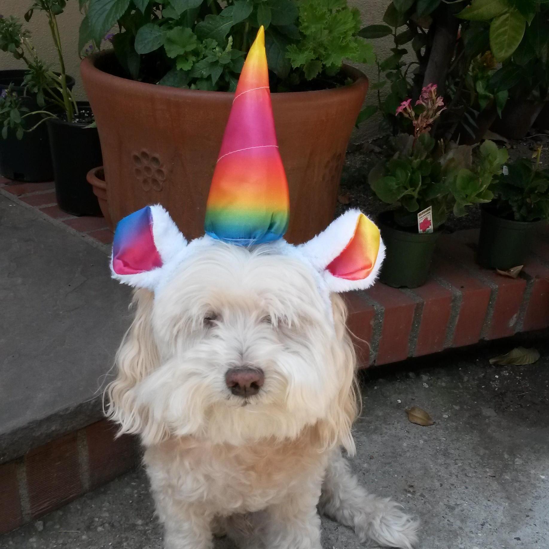 Brenda Baca's Profile Photo