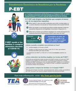 P-EBT 4