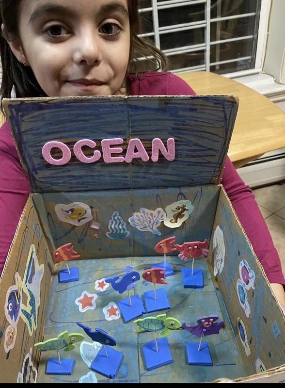 Girl's selfie with ocean project