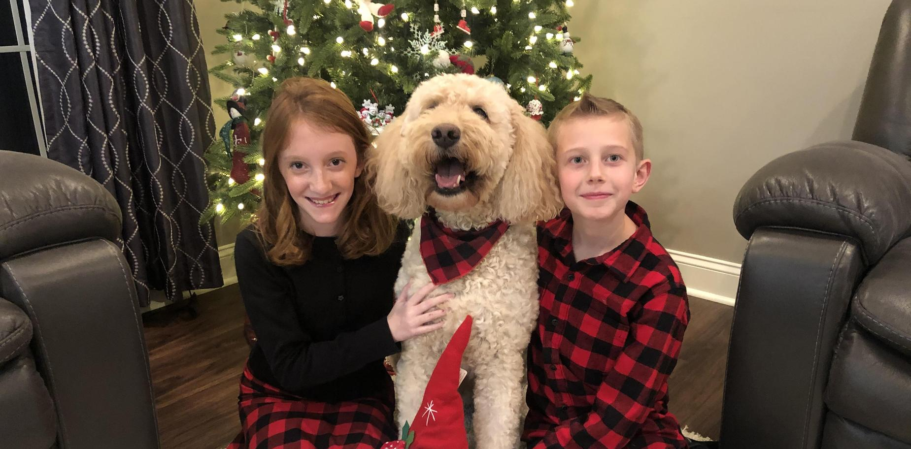 kids with their dog in holiday attire