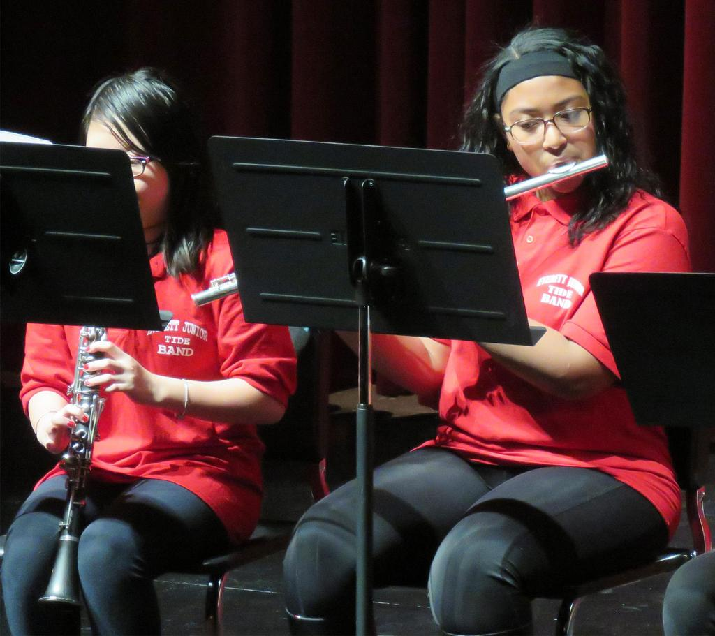 Clarinet and flute players, side by side on stage