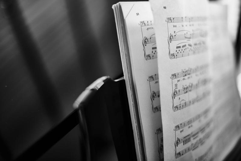 PYLUSD Elementary Music Program
