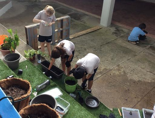 Grade 5-Earth Spheres and the inquiry garden Featured Photo