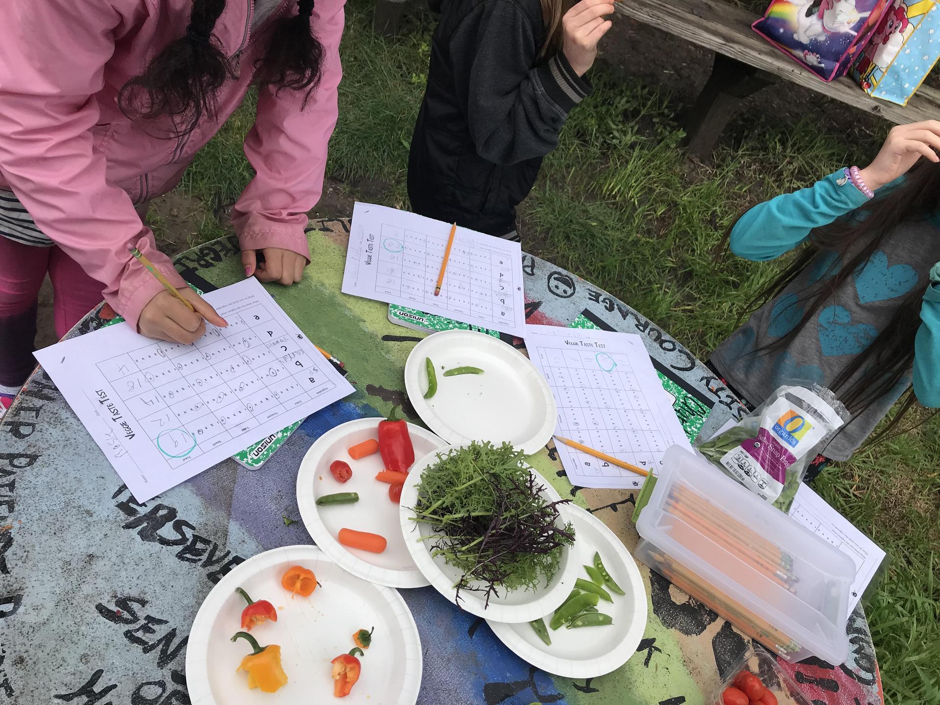 Jr. Master Gardeners taste test
