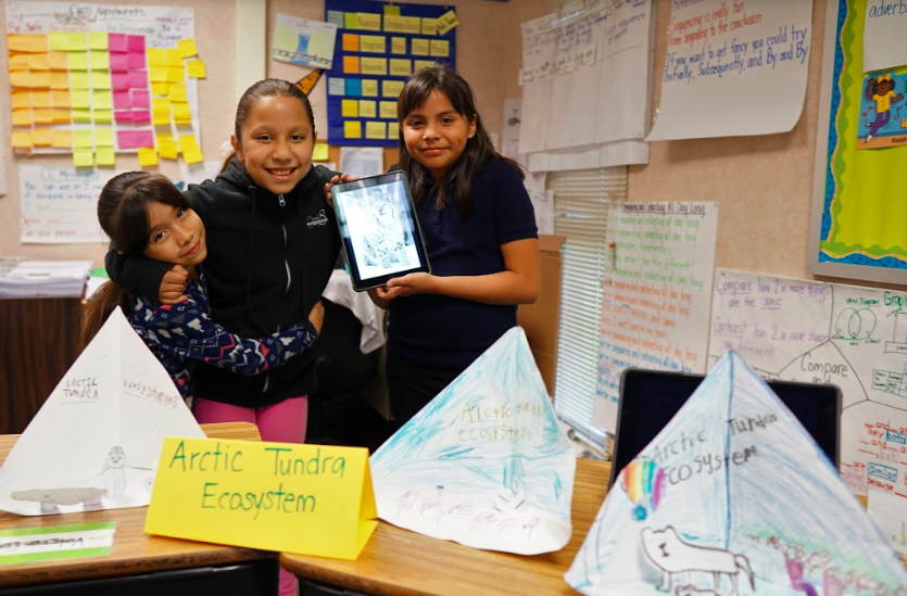 students gather around arctic tundra ecosystem projects