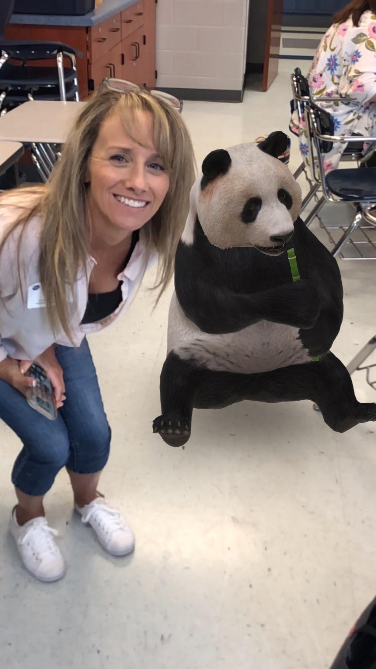 Hanging with panda