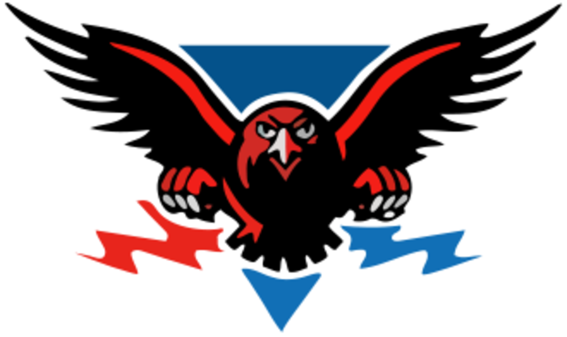 New Falcon Logo