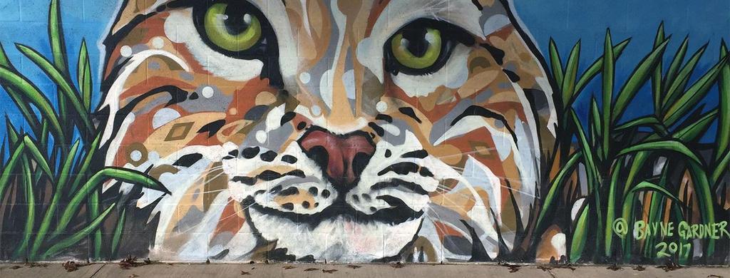 Territorial Elementary Bobcat Wall Mural