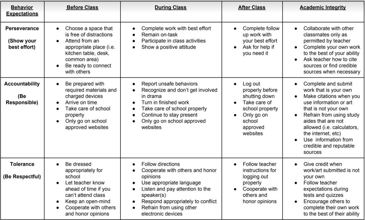 Remote Learning Behavior Matrix
