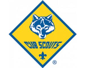 Cub Scout image 500x400.png