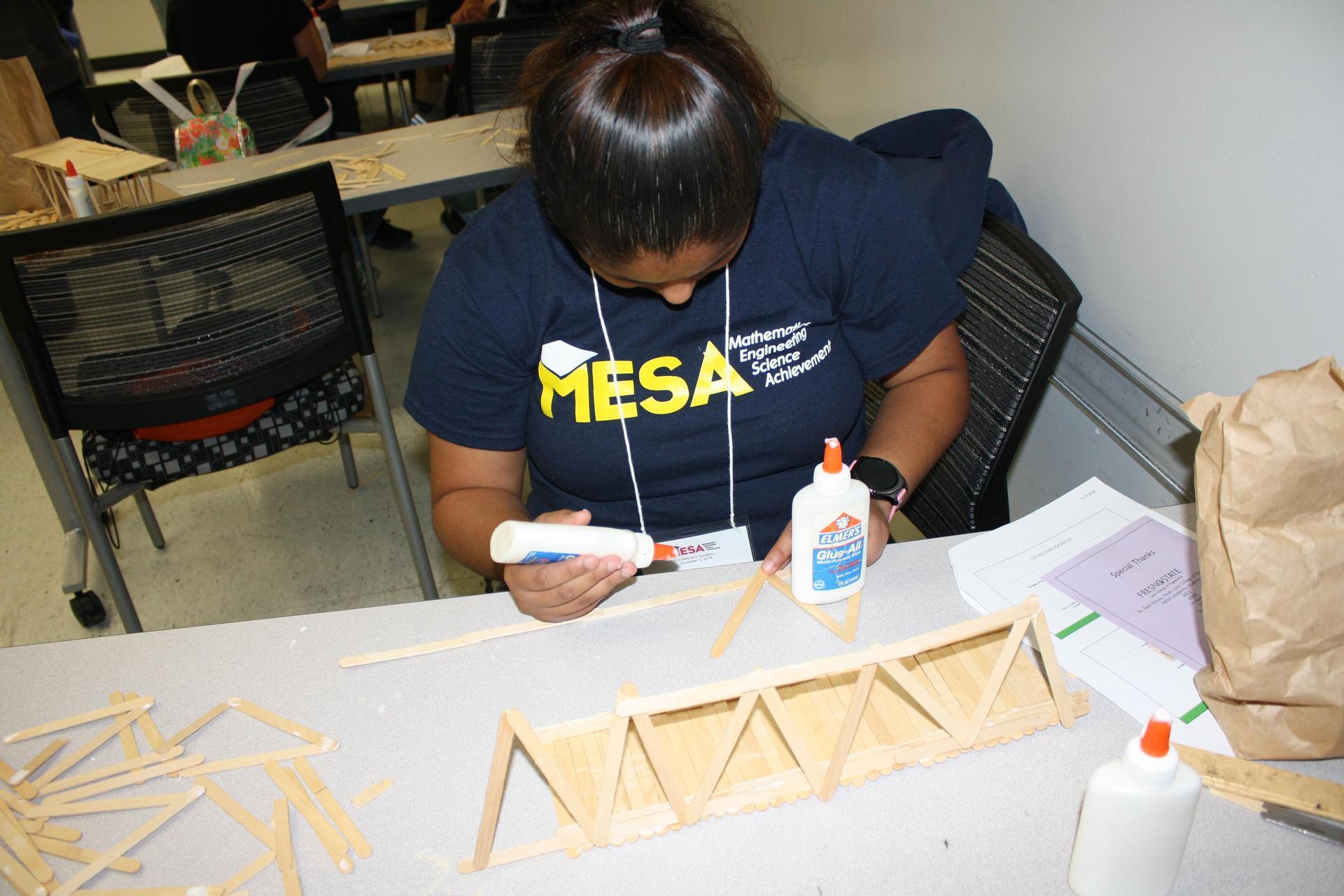 Mathematics, Engineering, Science Achievement