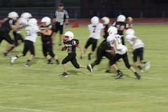 MWJH rams player number 81 running to catch the football.
