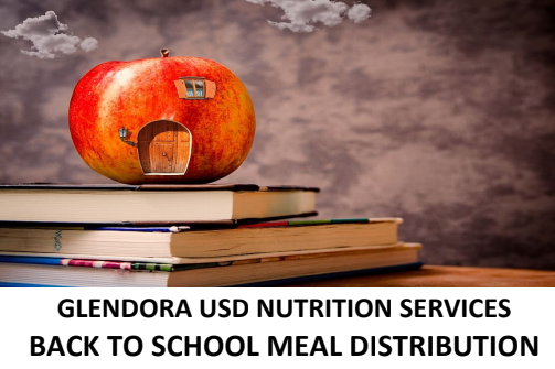 Nutrition Services Meal Distribution Flyer