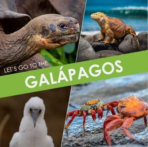 Galapagos IG Photo.JPG