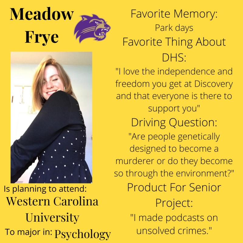 Meadow Frye