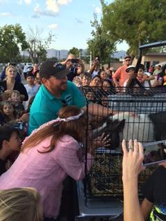 Kiss the pig at Fall Festival
