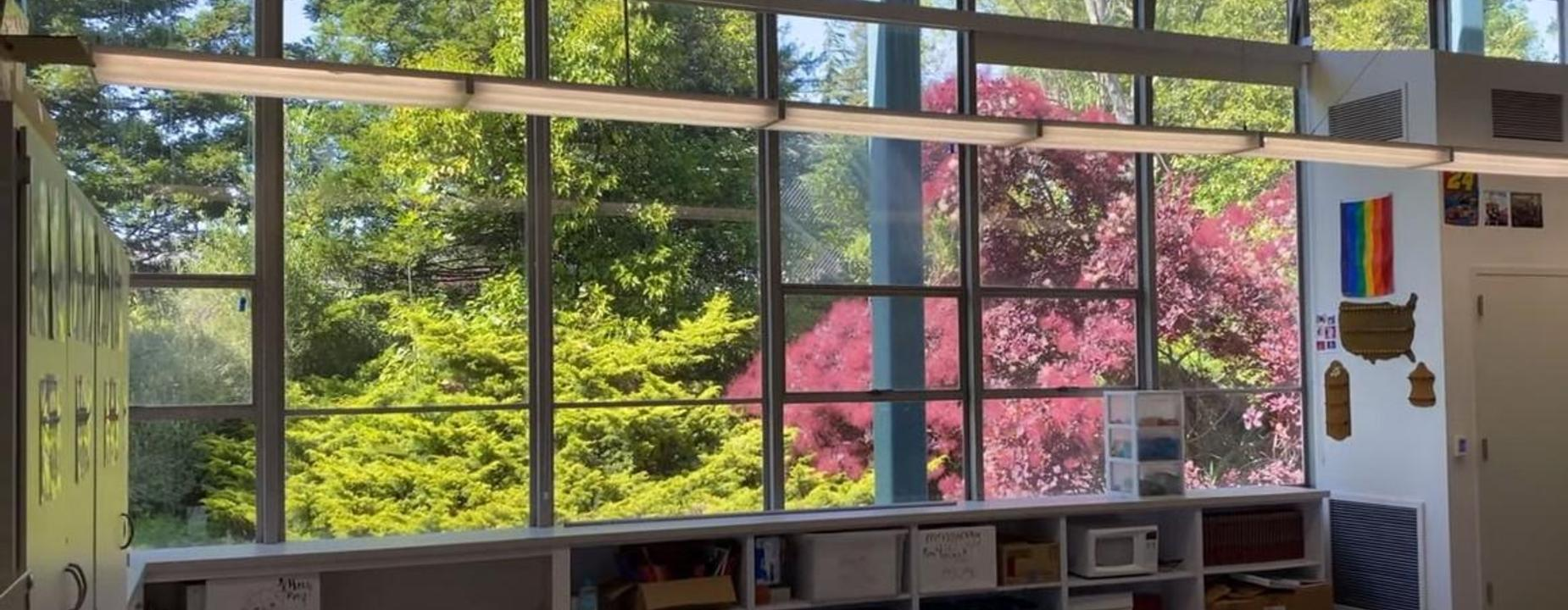 View from a classroom
