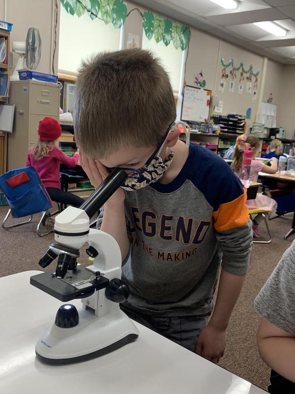 student observing with microscope