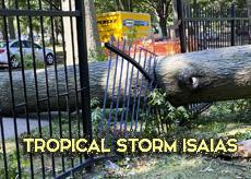 Storm Damage-Isaias Hits Hard