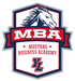 YLHS MBA logo