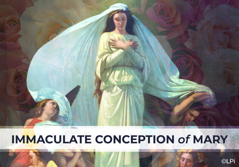Immaculate Conception of the Blessed Virgin Mary Thumbnail Image