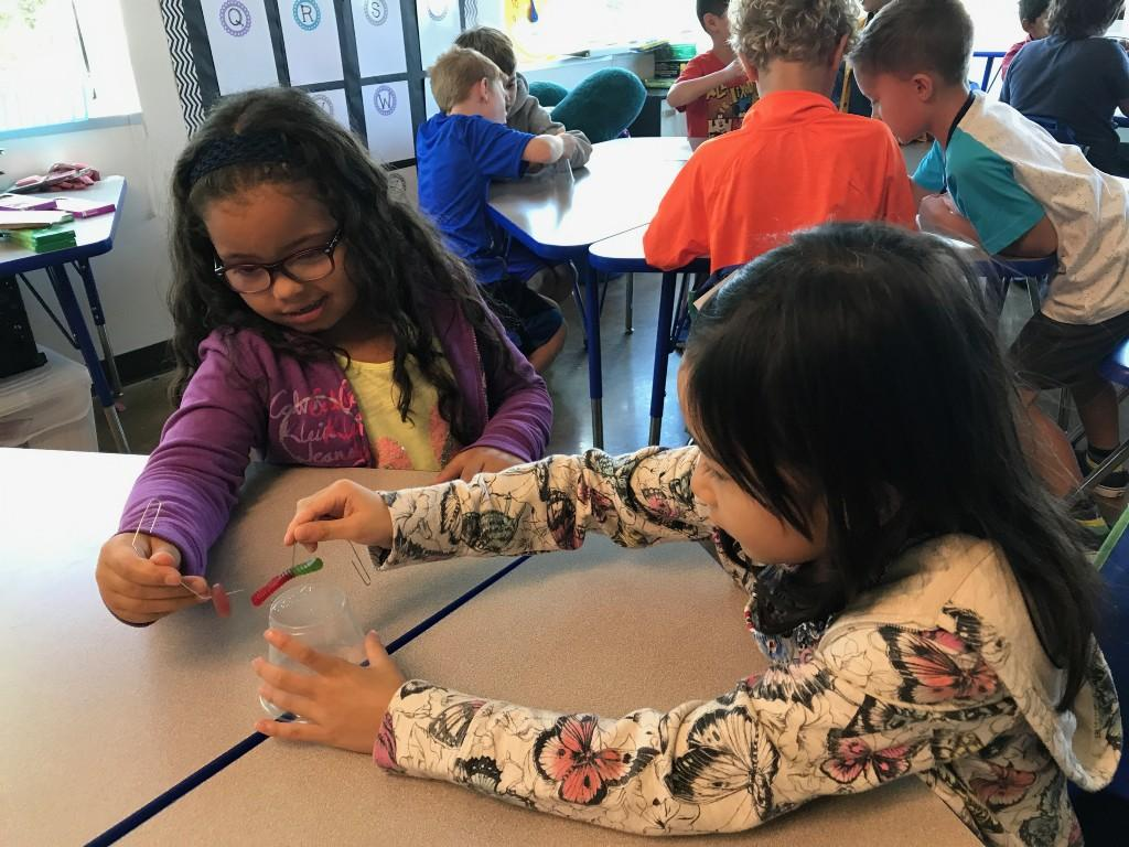 elementary working on project together