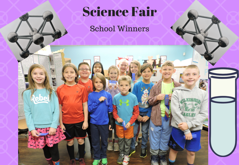 School Science Fair Winners Thumbnail Image