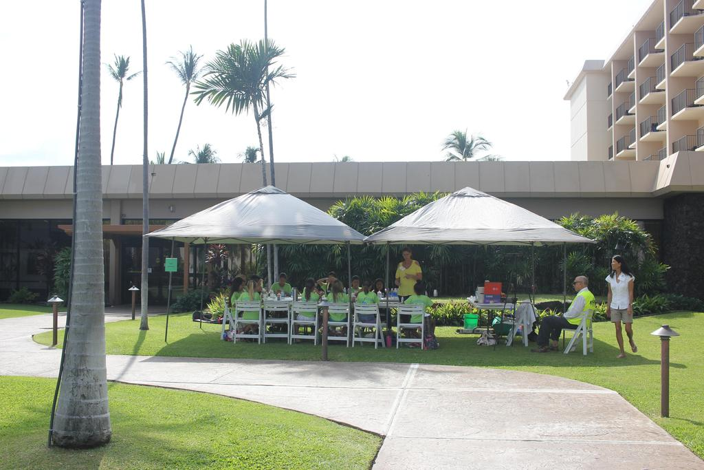 outside under a canopy