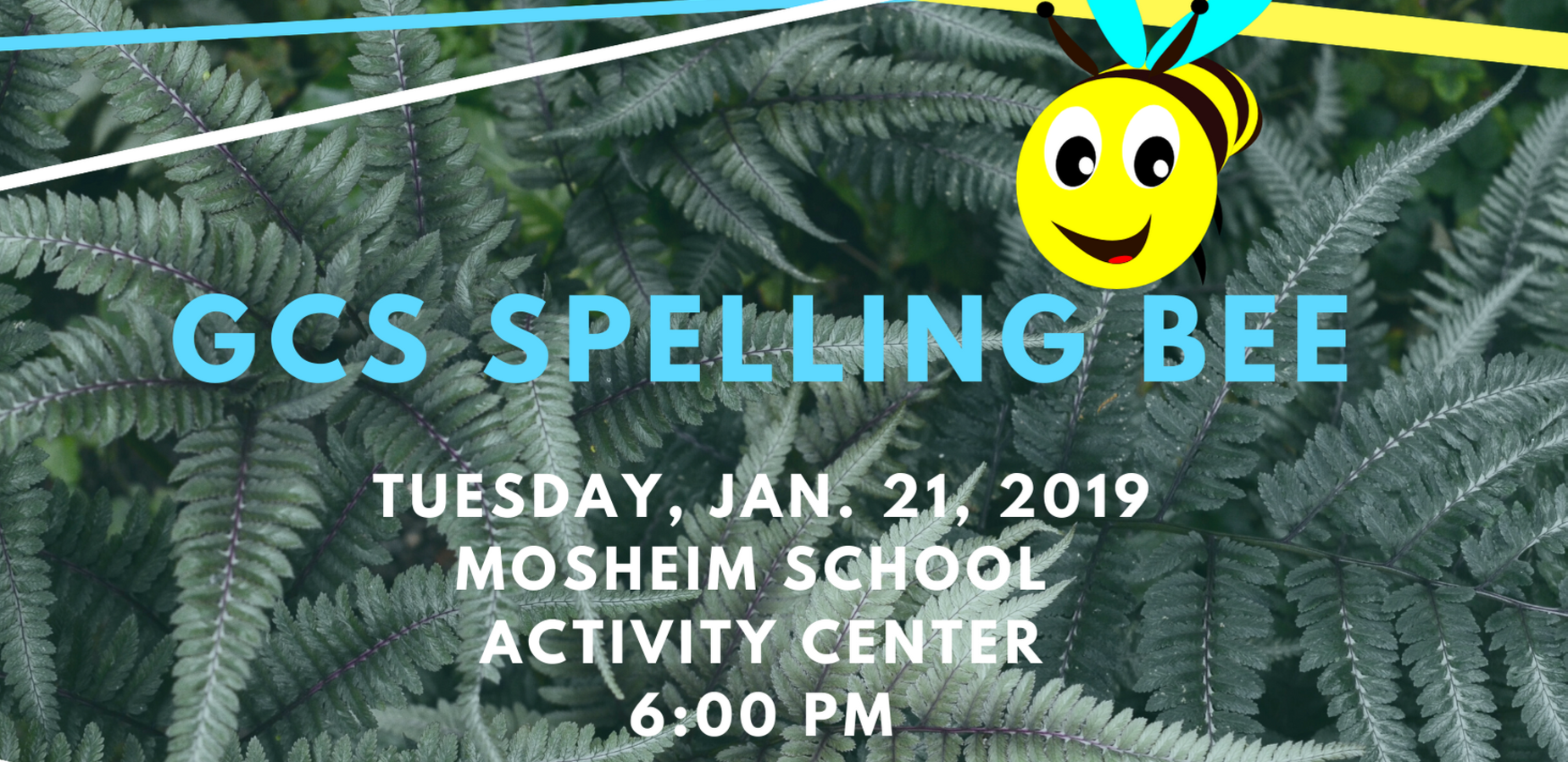 Spelling Bee Tuesday!