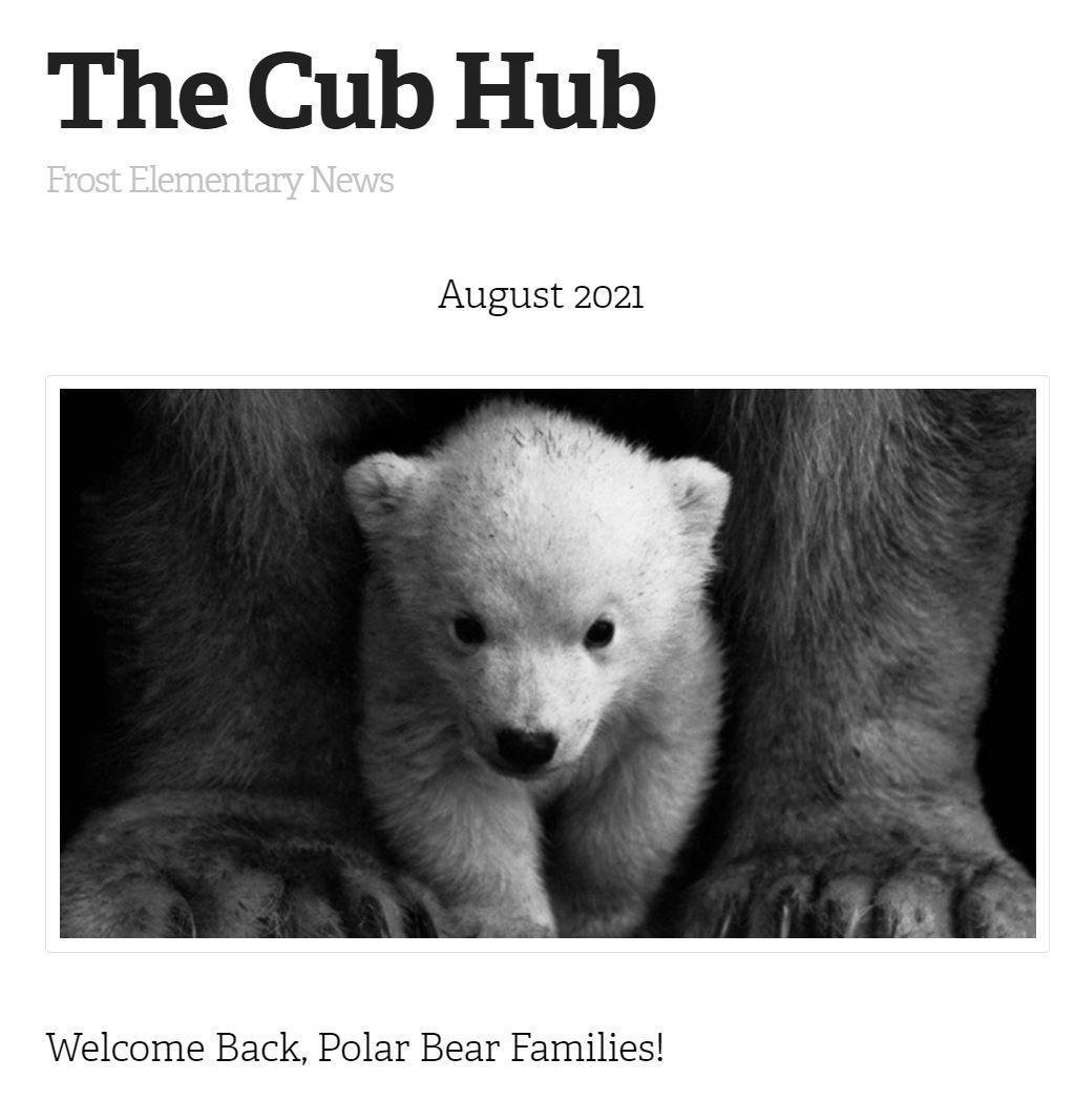 The Cub Hub