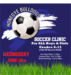 Grades 6-12 Soccer Clinic for Girls and Boys