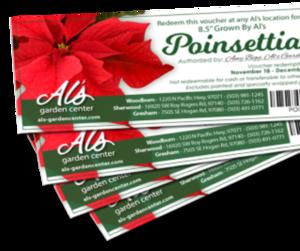 Poinsettia Vouchers.png