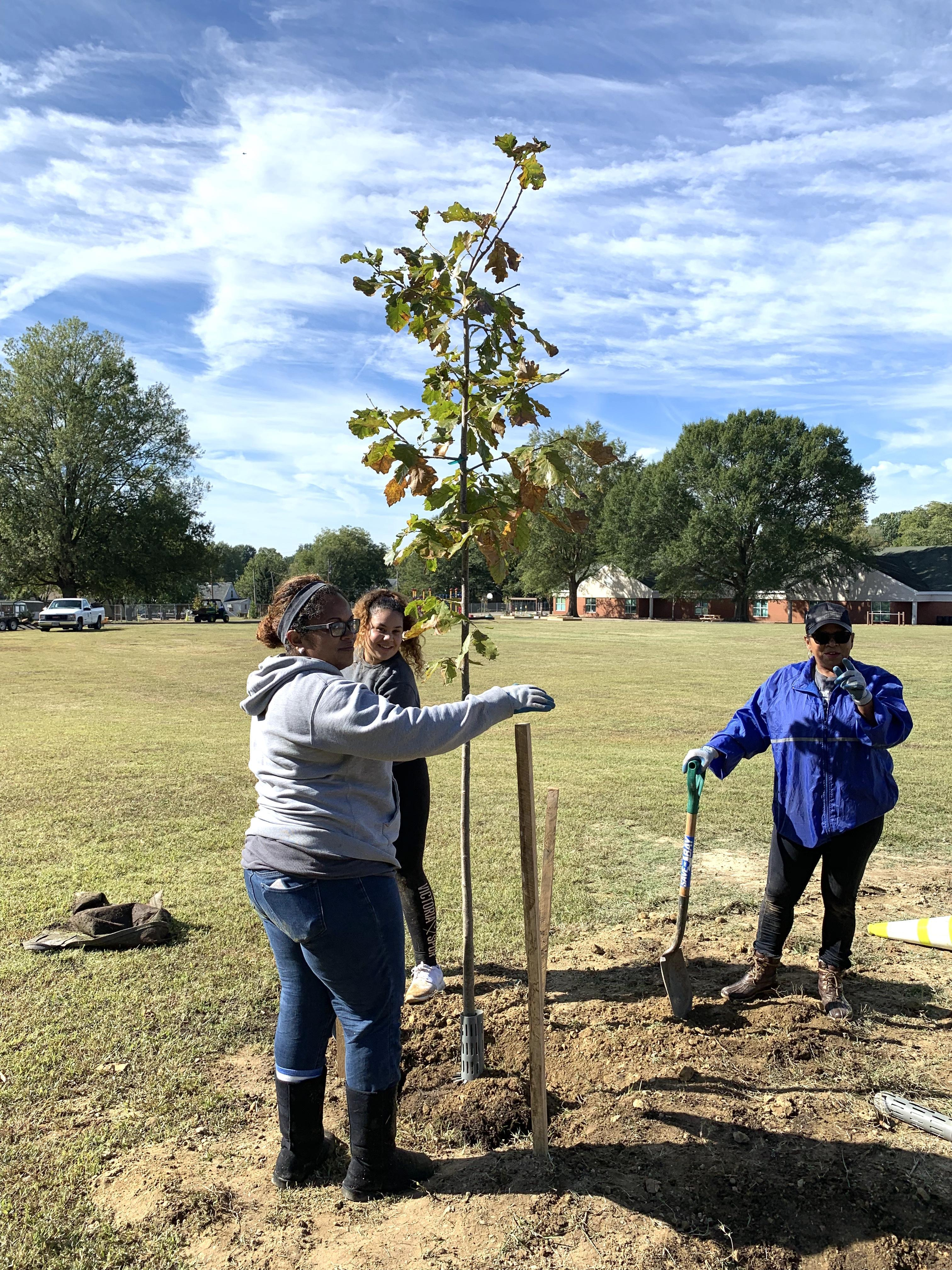 two ladies with shovels looking at a newly planted tree