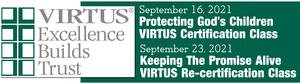 virtus web banner.png