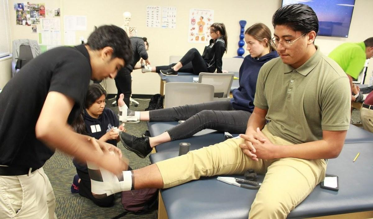 students at work in sports medicine