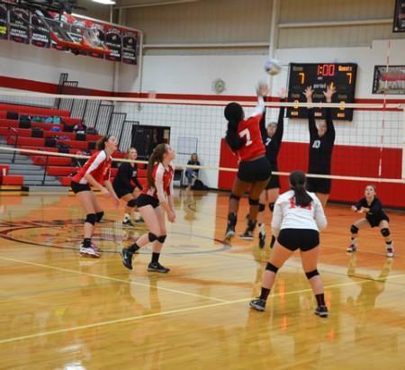 Varsity Volleyball vs. Lutheran Westland.