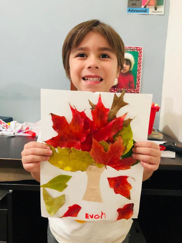 Castellano's leaf project