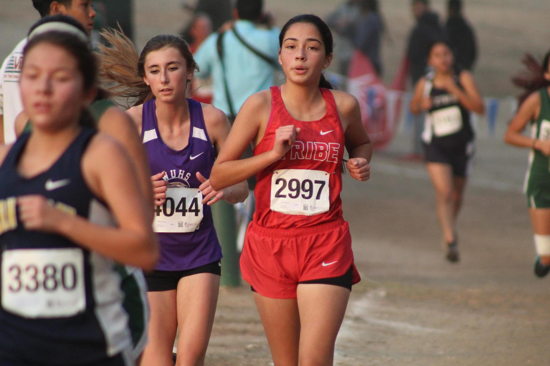 Girls running in the Central Section D-5 Cross Country Championship race.