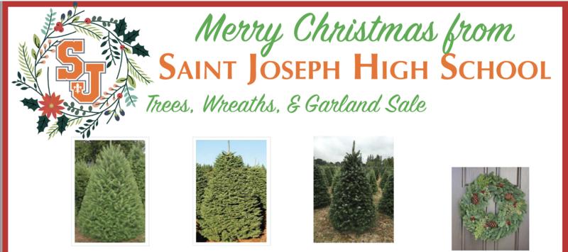 Christmas Trees! Thumbnail Image