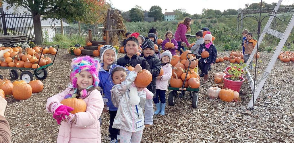 Students display the pumpkins they received during their trip to Brooksby Farm in Peabody