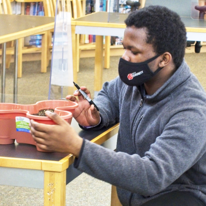A student working on a planting project