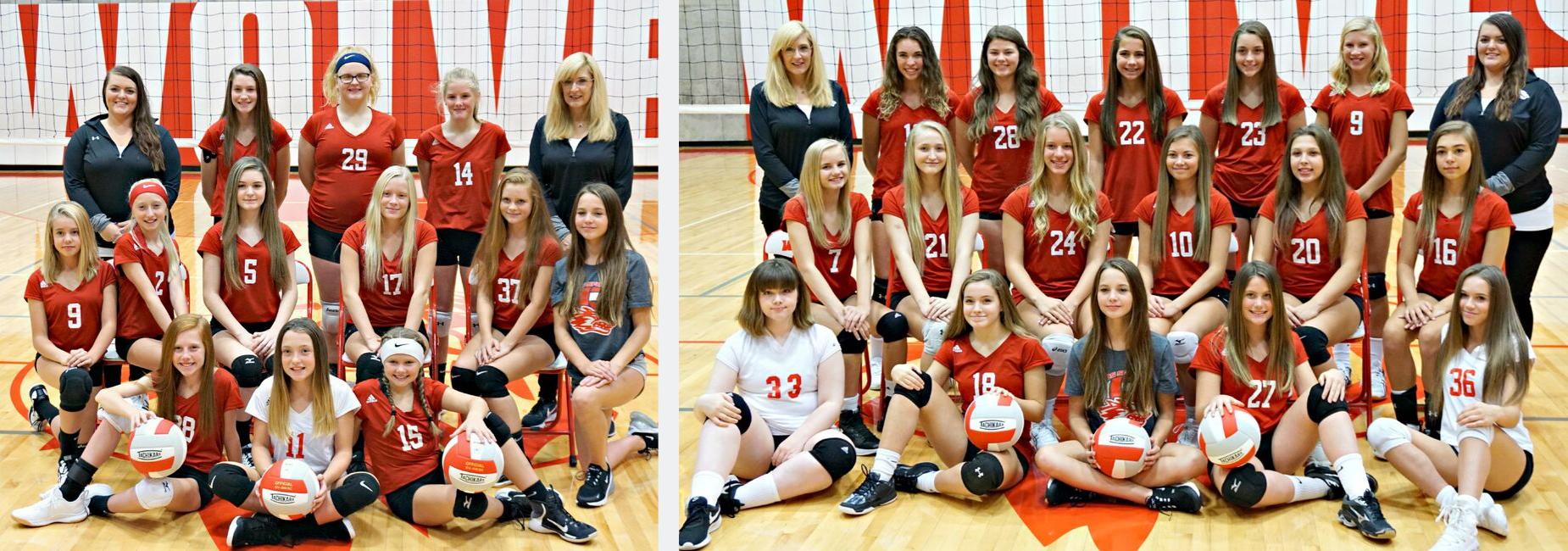 RSMS Volleyball Teams