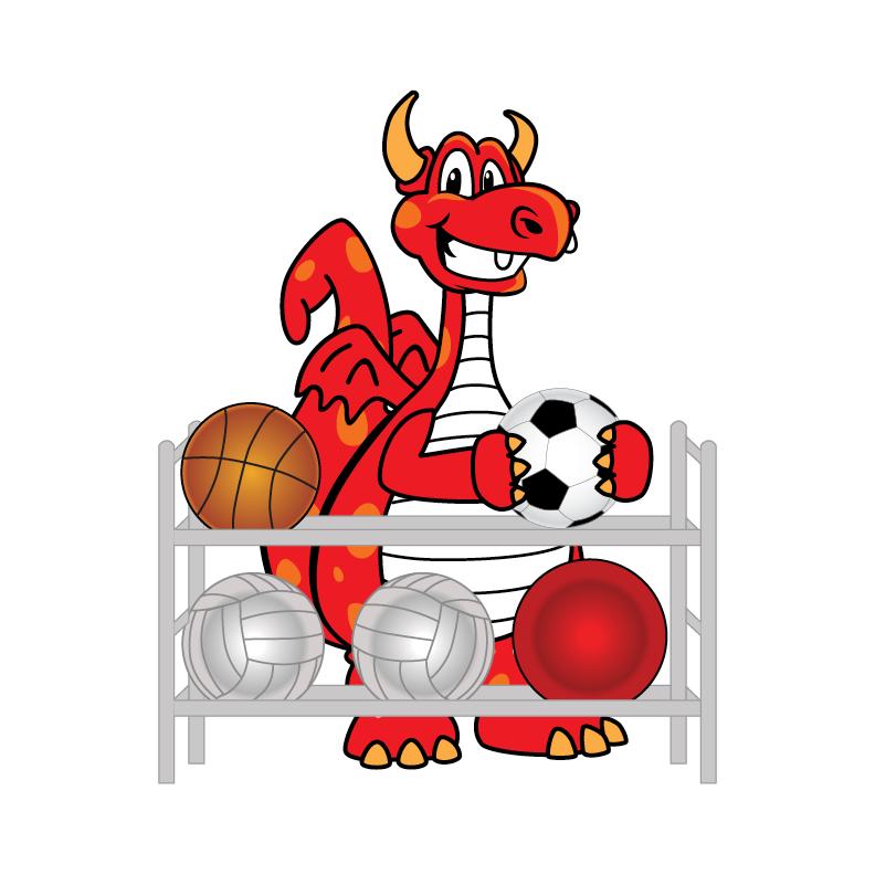 dragon sports graphic