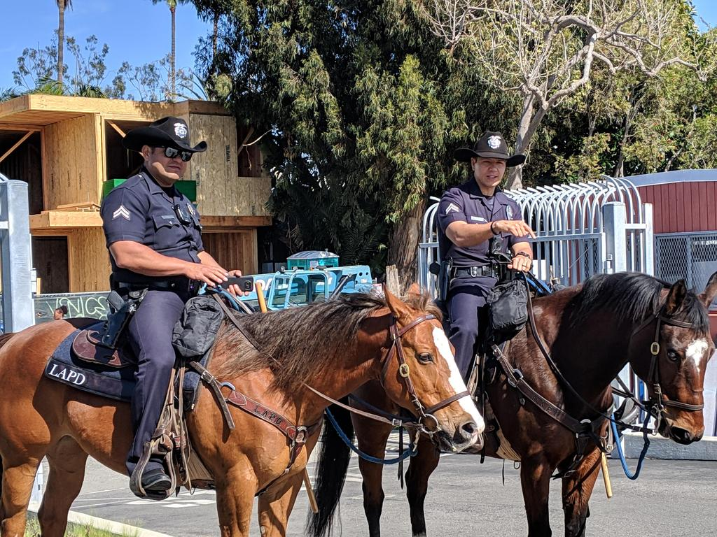 Officers on horses